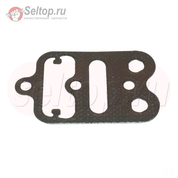 Gasket-Cylinder Head Plate, briggs-and-stratton