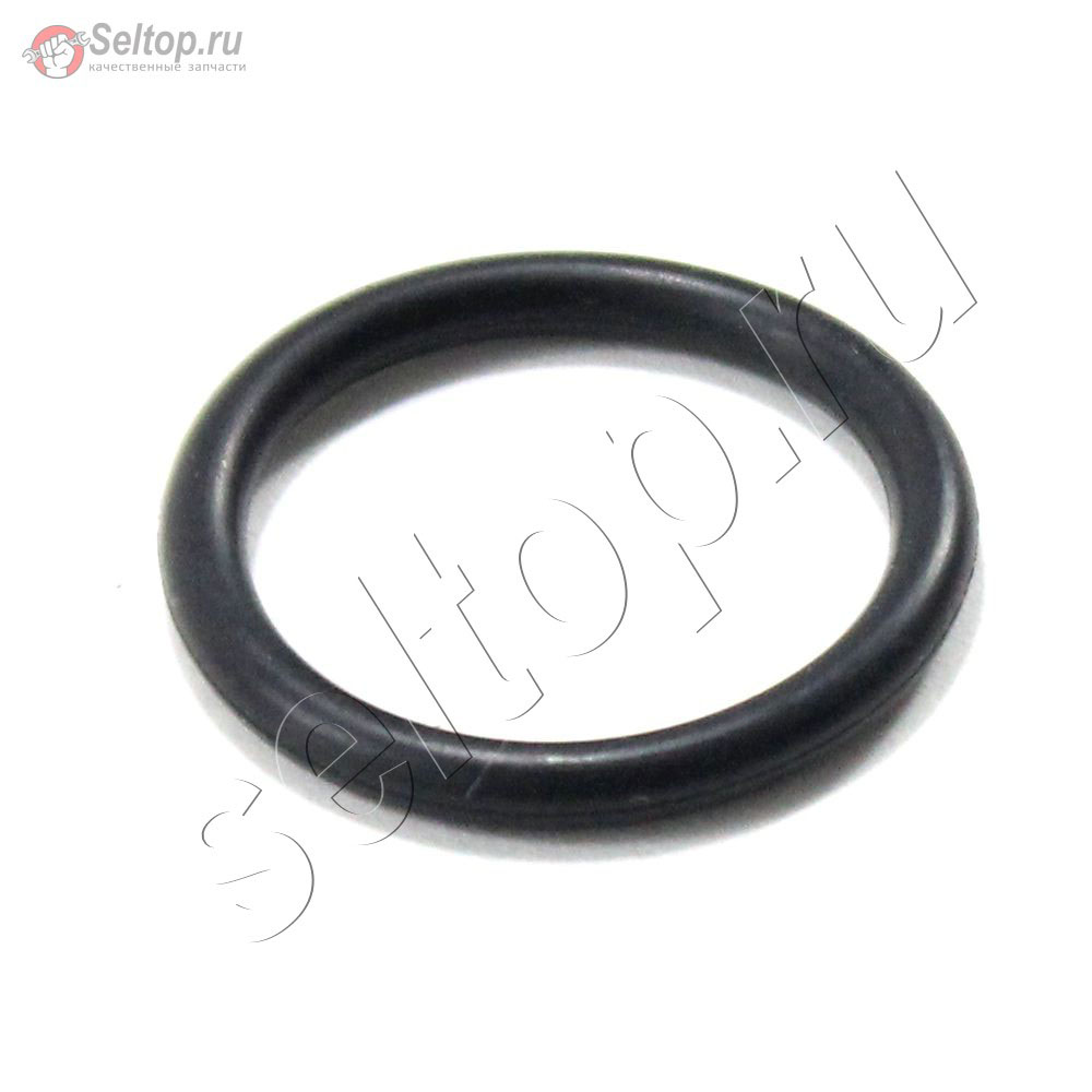 (Muffler Guard) Seal-O Ring, briggs-and-stratton