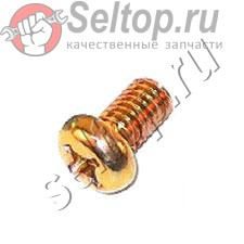 Machine Screw M6x10 (10 Pcs.), hitachi